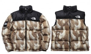 supreme_northface_20