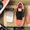 "直リンク掲載 11月21日発売 Nike SB Premire ""Fish Ladder"" Collection"
