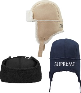 supreme_2015121006