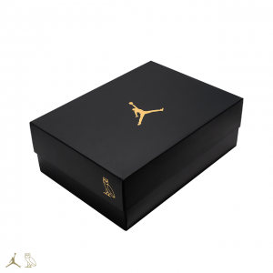 black-ovo-air-jordan-10-release-date-5