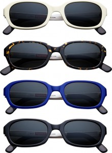 Vega Sunglasses