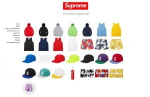 supreme_2016062401
