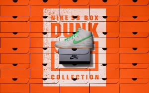 nike-sb-dunk-high-premium-gray-box-main