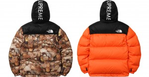 supreme_northface_08