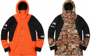 supreme_northface_09