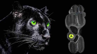1月21日発売予定 Nike Air Jordan 13 Retro BLACK CAT