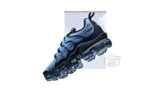 1月27日発売 Nike Air Vapormax Plus 924453-401/300